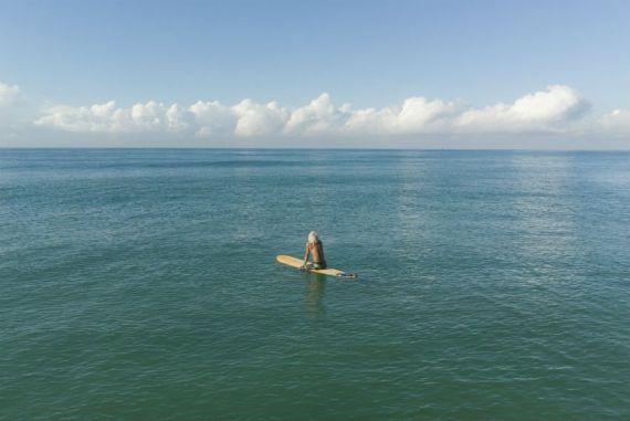Surfe na essência