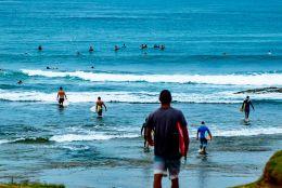 Covid x surf